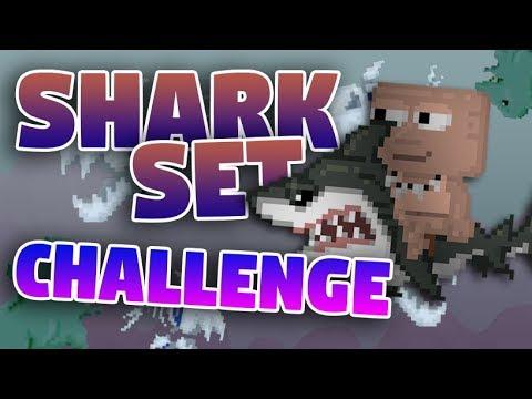 how to set a shark watch