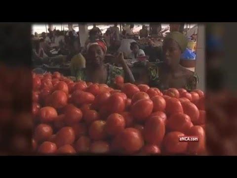 Feeding 9-billion people by 2050