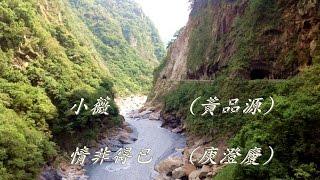 小薇 (黃品源) ~ 情非得已 (庾澄慶)
