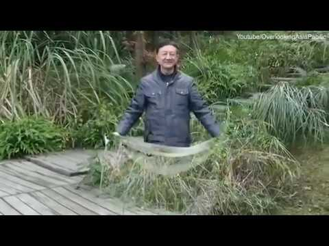 QUANTUM INVISIBILITY CLOAK - CHINESE TECHNOLOGY