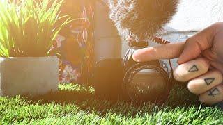 ЛУЧШАЯ камера для съемки видео для YouTube в 2019 году