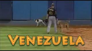 Venezuela: Funny Baseball Bloopers (LVBP)