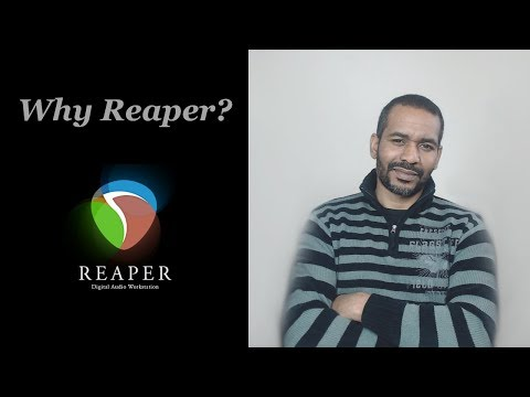 Why Reaper? | Pros And Cons