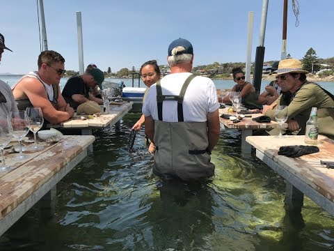This Coffin Bay Oyster Experience Is Bucket List Material