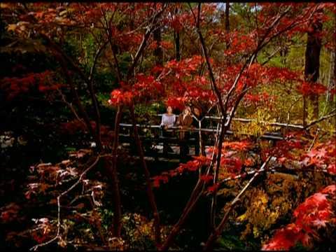 "Arkansas Parks & Tourism Fall 09 ""Closer to Nature"""