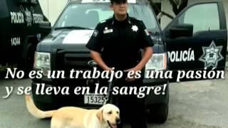 Policía federal seguridad regional.(de caminos)