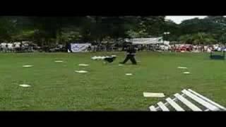 Malaysia Dog Club - Malaysia Police K9 @ Dog Olympic Day - 3