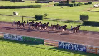 Vidéo de la course PMU PRIX DE LYON-PARILLY