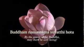 Ratana Sutta - The Jewel Discourse - Animated Subtitles & Translations HD 720p