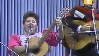 Asis de Mostazal, Con Mi Voz y Mi Guitarra, Festival de #ViñadelMar 1989, Competencia Folclórica