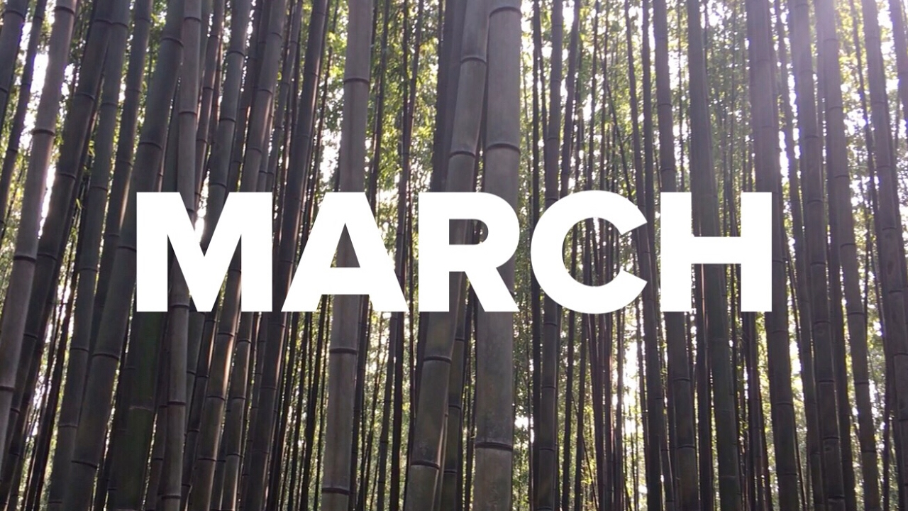 MARCH / ONE SEC EVERYDAY image