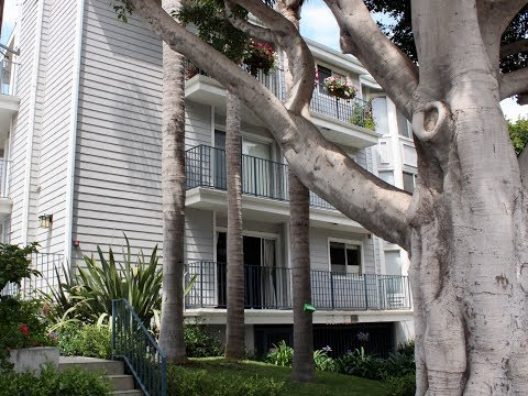 Santa Monica Home For Rent - 3 Bed 2 Bath - by Property Management in Los Angeles CA