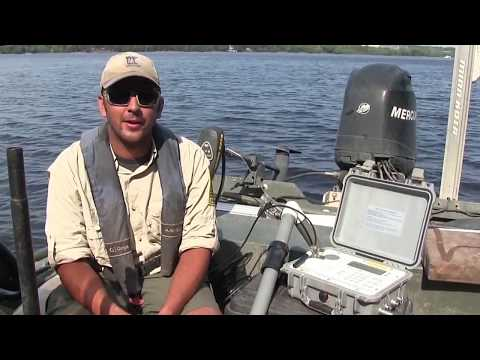 Tracking Invasive Carp - Minnesota DNR