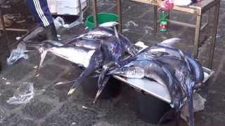 Fish Market in Catania, Italy