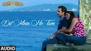 "Presenting the full audio of dil mein ho tum for movie, ""why cheat india"". it features emraan hashmi and shreya dhanwanthary in lead. this song has b..."