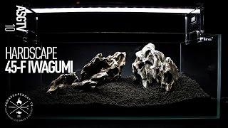 45-F Nano Iwagumi Aquascape - Hardscape Step by Step Time Lapse