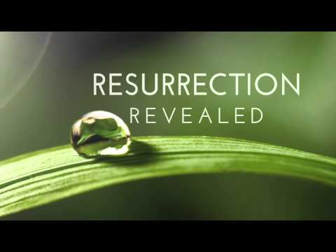 Resurrection On ABC - Full Episode Discussion To