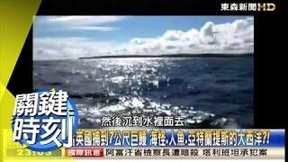 深海亞特蘭提斯 捕獲人魚寶寶?! 黃創夏 20150515