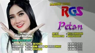 Gambar cover Nella Kharisma | Petan | Dangdut Koplo | RGS