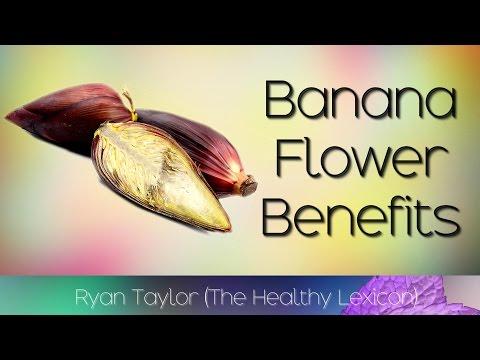 Banana Flower: Benefits and Uses