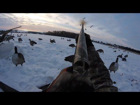 HEY GOOSE! - Ohio Goose Hunt