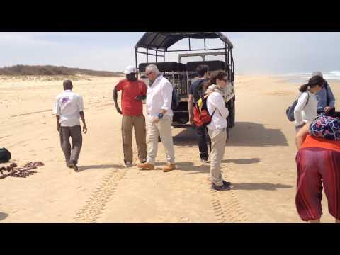 Destino SENEGAL: Playa cerca del Lago Rosa