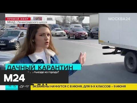ЦОДД предупредил водителей о заторах перед длинными выходными - Москва 24