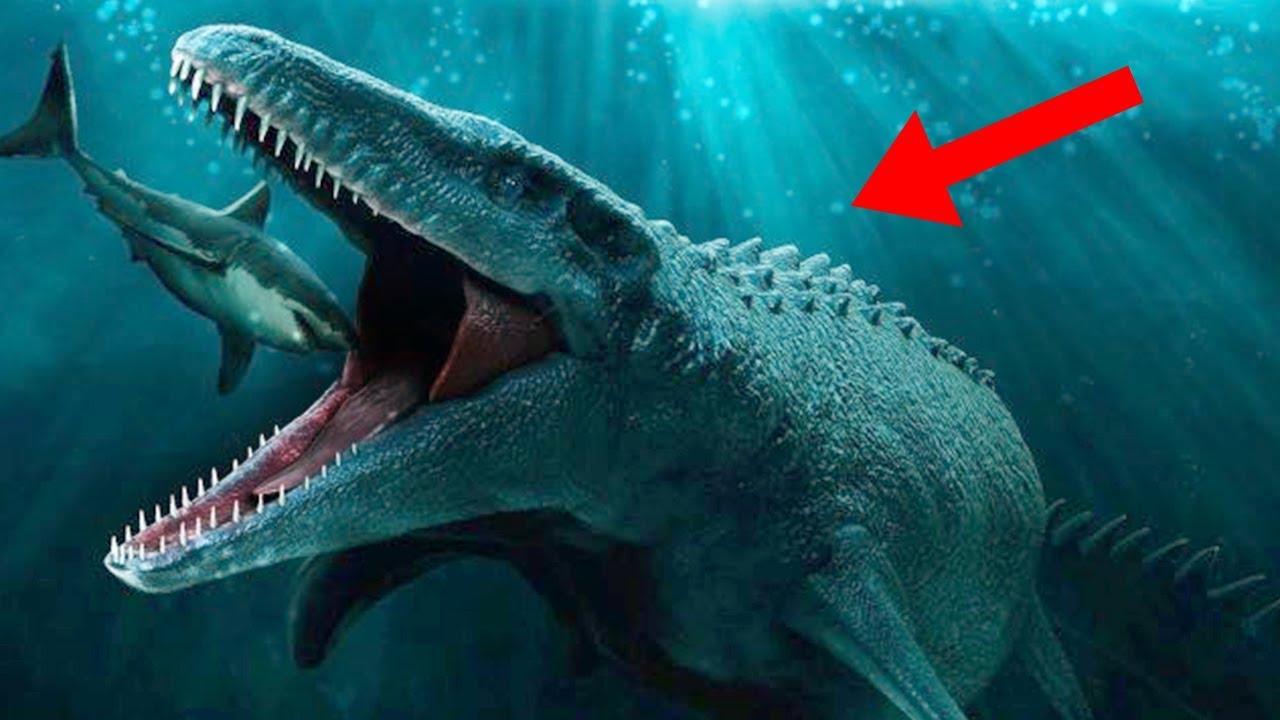 Most Terrifying Prehistoric Sea Creatures Youtube