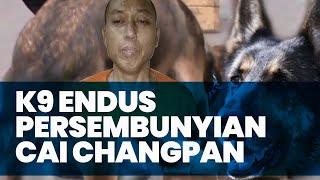 Anjing Pelacak Diturunkan Endus Persembunyian Terpidana Narkoba Cai Chang Pan yang Kabur dari Lapas