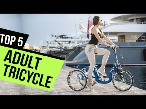 top-5:-adult-tricycle---must-watch-before-buying