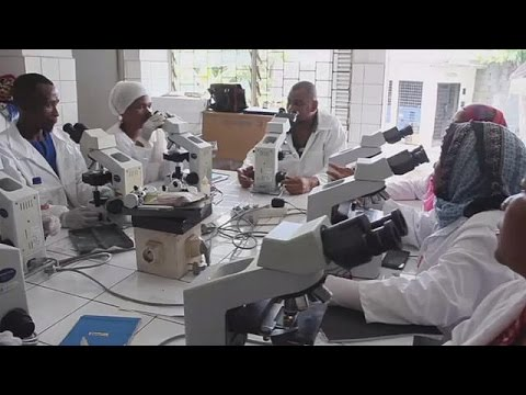 The Comoros on the verge of completely eradicating malaria