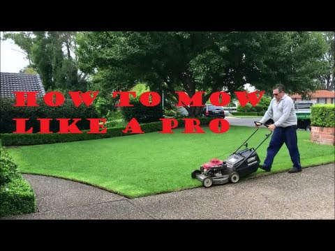 [how-to-mow-a-lawn]-like-a-pro---lawn-mowing-tips-for-a-great-looking-lawn---lawn-care-tips
