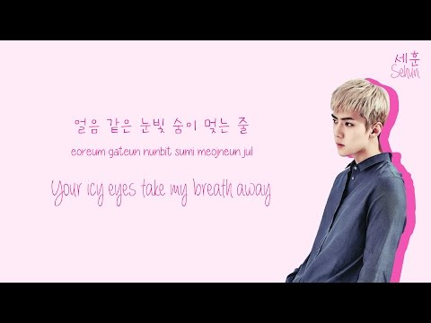 EXO 엑소 - Twenty Four  Color-Coded HanRomEng