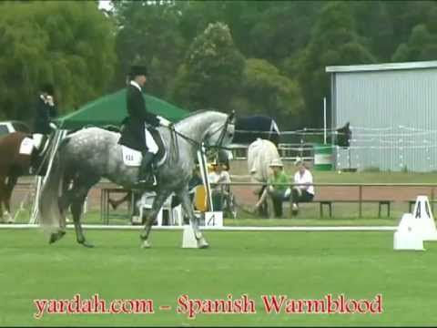 Yardah Tosco - Dressage Freestyle