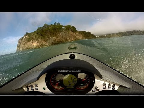 Seabreachers at the California Coast