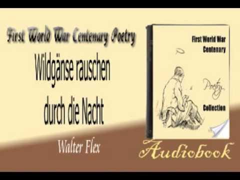 various colors f8a9f 7ab8a Wildgänse rauschen durch die Nacht Walter Flex audiobook