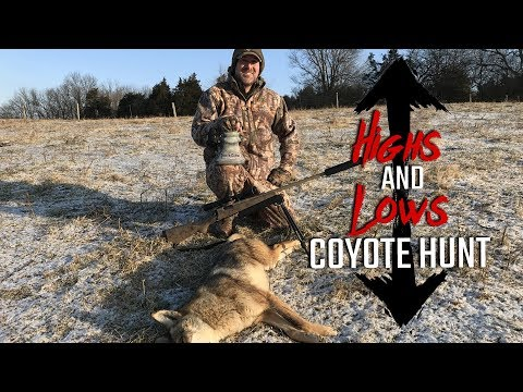 Highs and Lows Coyote Hunt