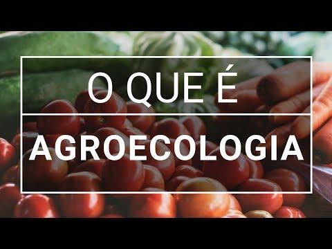 O Que é Agroecologia