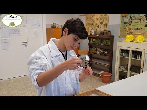 Istituto Agrario di Fabro - La scuola per il tuo futuro