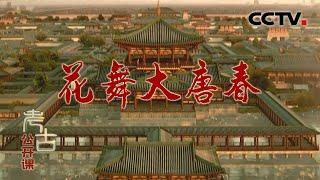 《考古公开课》 20200531 花舞大唐春| CCTV科教