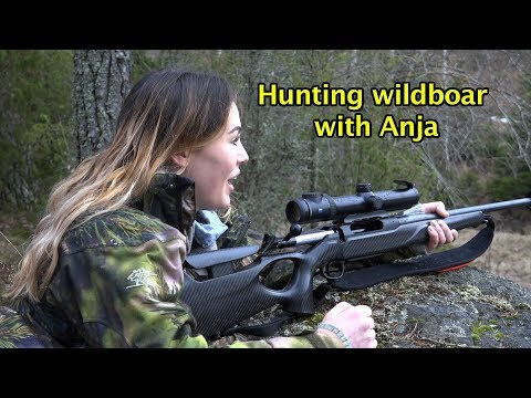 Hunting wildboar-- hog hunting--chasse sanglier- wildschwein jagd--keiler