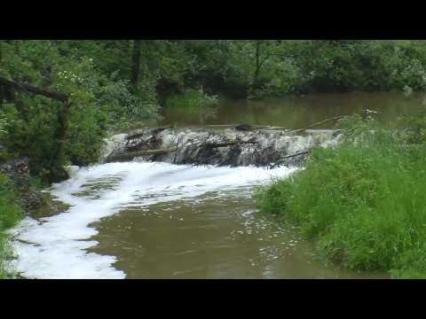 Blackmud creek Edmonton water level high