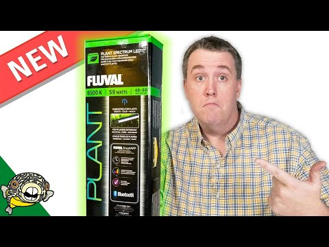 MY NEW FAVORITE LIGHT! Fluval Plant Spectrum 3.0 LED Light Review
