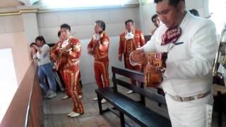 Huapango de Moncayo 22/11/15 San Agustín Mimbres