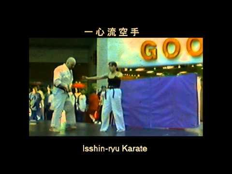 43yr old Mom of 3, Sherry Lynn Lang, martial arts demo