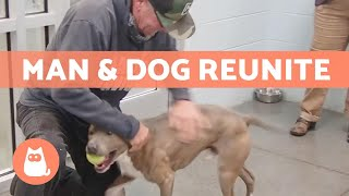 Man Travels Over 1200 miles to REUNITE with LOST DOG 🐶❤️🧑🏻
