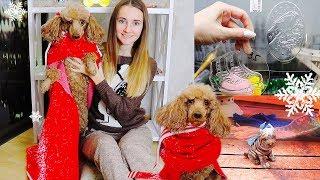 Домашний уютный VLOG 🐶 Собачка Пальма | НОВОГОДНИЙ декор | Будни МЫЛОВАРА | Мои ФОРМЫ