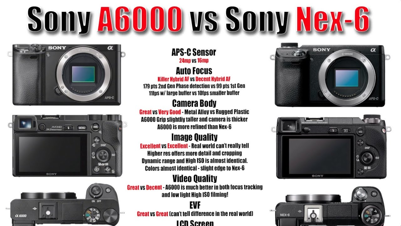 sony nex 6. sony a6000 vs nex 6 - image quality, high iso, focus testing, and more.. youtube (