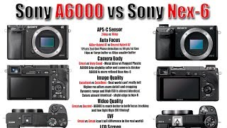 Sony A6000 vs Sony Nex 6 - Image Quality, High ISO, Focus Testing, and More..