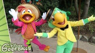 Caballeros José & Panchito NEW Meet & Greet - Halloween Disneyland Paris 2018
